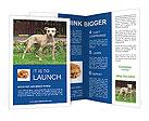 0000031398 Brochure Templates
