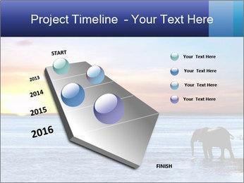 Elephant In Sri Lanka Modèles des présentations  PowerPoint - Diapositives 26