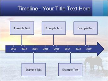 Elephant In Sri Lanka Modèles des présentations  PowerPoint - Diapositives 28