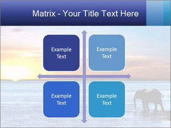 Elephant In Sri Lanka Modèles des présentations  PowerPoint - Diapositives 37