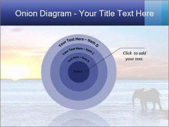 Elephant In Sri Lanka Modèles des présentations  PowerPoint - Diapositives 61