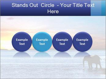 Elephant In Sri Lanka Modèles des présentations  PowerPoint - Diapositives 76