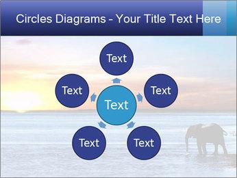 Elephant In Sri Lanka Modèles des présentations  PowerPoint - Diapositives 78