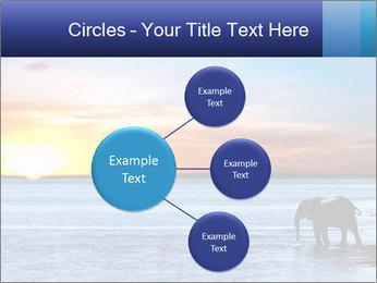 Elephant In Sri Lanka Modèles des présentations  PowerPoint - Diapositives 79