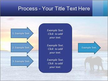 Elephant In Sri Lanka Modèles des présentations  PowerPoint - Diapositives 85
