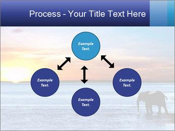 Elephant In Sri Lanka Modèles des présentations  PowerPoint - Diapositives 91