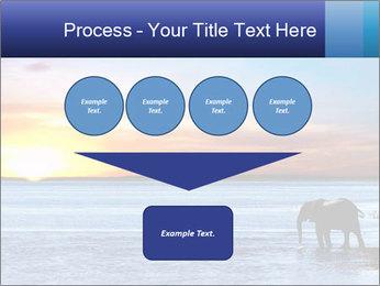 Elephant In Sri Lanka Modèles des présentations  PowerPoint - Diapositives 93