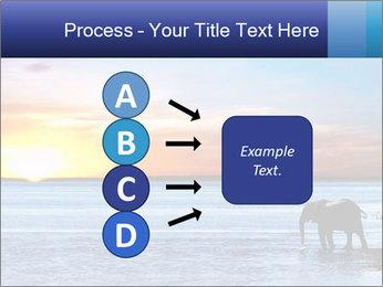 Elephant In Sri Lanka Modèles des présentations  PowerPoint - Diapositives 94