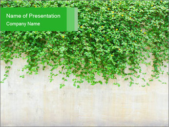 Wall Covered in Green Plants PowerPoint Template