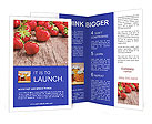 0000031744 Brochure Templates