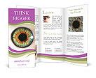 0000031979 Brochure Templates