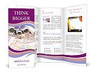 0000032049 Brochure Template
