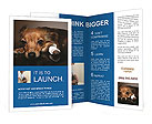0000032139 Brochure Templates