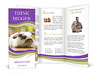 0000032242 Brochure Templates