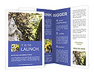 0000032262 Brochure Templates
