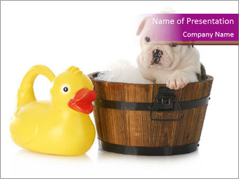 Wash Puppy PowerPoint Template