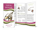 0000032362 Brochure Templates