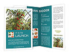 0000032473 Brochure Templates