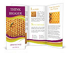 0000032576 Brochure Templates