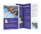 0000032713 Brochure Templates