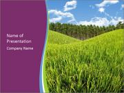 Nice Green Meadow PowerPoint Templates