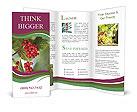 0000032742 Brochure Templates