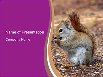 Cute Rodent PowerPoint Template