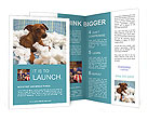 0000032818 Brochure Templates