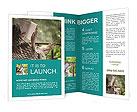 0000032953 Brochure Template