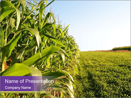 Green Farm Powerpoint Template Backgrounds Google Slides Id