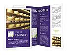 0000033168 Brochure Templates