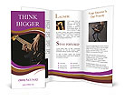 0000033377 Brochure Templates