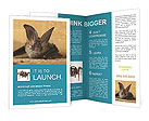 0000033501 Brochure Templates