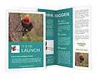 0000033517 Brochure Templates