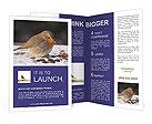 0000033681 Brochure Templates