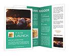 0000033907 Brochure Templates