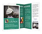 0000034003 Brochure Templates