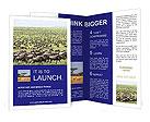 0000034033 Brochure Templates