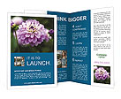 0000034187 Brochure Templates