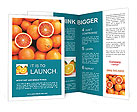 0000034653 Brochure Templates