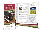 0000034772 Brochure Templates