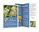 0000034930 Brochure Templates
