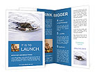 0000035206 Brochure Templates