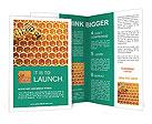 0000035288 Brochure Templates