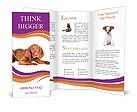 0000035716 Brochure Templates