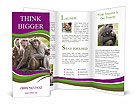 0000035745 Brochure Templates