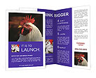 0000035993 Brochure Templates