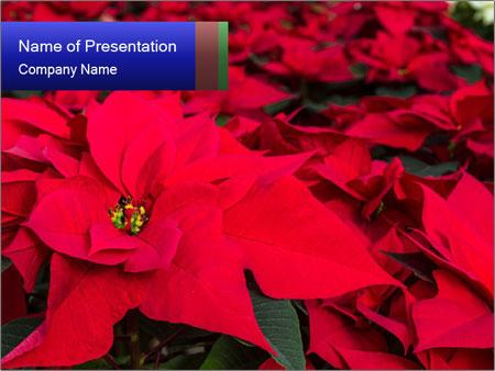 Weihnachten Powerpoint Vorlagen Smiletemplatescom
