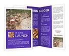 0000036372 Brochure Templates