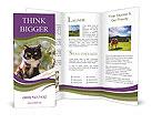0000036515 Brochure Templates